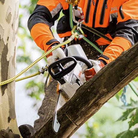 power-type-chainsaws for use in noise-sensitive areas MSA 161 T