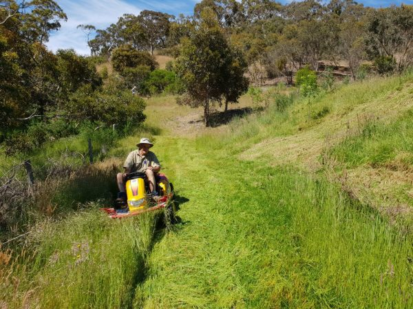 Commercial garden machinery ride-on-mower supplier of CM1401H in Perth