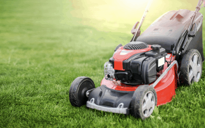 What is Better: A Battery or Petrol Lawnmower?